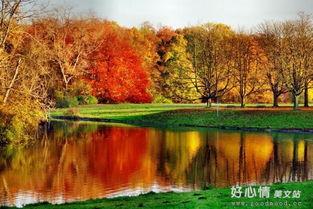形容秋天心情的句子 形容秋天的优美句子,形容秋天的句子