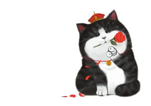 艹猫0补丁krkr2-铲屎官太忙,没时间恋爱,爸爸急了……《就喜欢你看不惯我又干不掉...