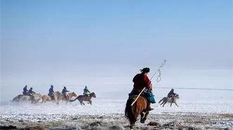 接触草原人民的图腾,观看草原狼捕食过程,探索蒙古铁