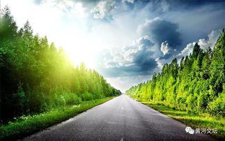 精美诗歌 最美的风景在路上 组诗 丁丽