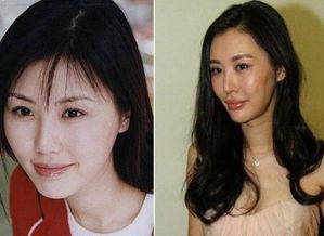 ...王石订婚 女方整容变脸曾是社交女王