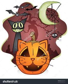 阿猫杰克灯笼卡通人物蜘蛛和不幸的黑猫