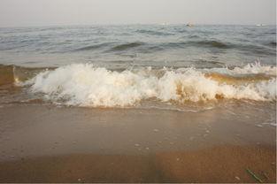 东戴河 海边 我们一起奔跑吧