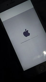 iphone6 plus屏幕变灰