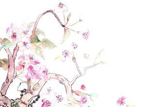 古风桃花枝扇图形图案
