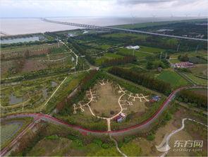 上海热线HOT新闻 航拍长兴岛郊野公园