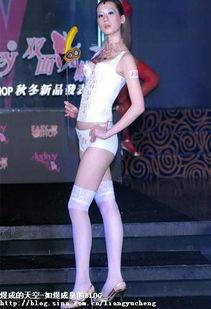 中国超模激情演绎情趣内衣秀 组图