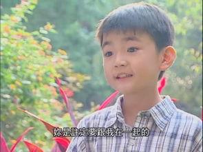...,后堕落黑帮成小混混,现将一名残疾少年砍成重伤 台湾 童星