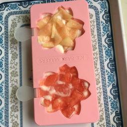 4. 把雪糕棒放入,其上加上水果后再倒一层酸奶,端起模具轻震几下-...