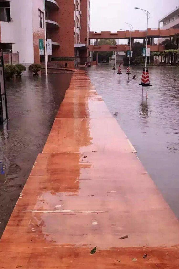 雨起风动-一夜的狂风暴雨,通城很多地势低凹的地方都淹了水.清晨6点启秀的...