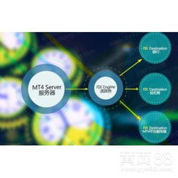 MT4平台出租MT4服务器搭建MT4平台一站式服务 -广州黄页88网