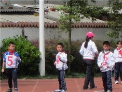 3953 缩小大小 运动会 四川大学附属实验小学东山学校二年级小淑绅