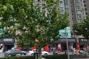 上海市徐汇区,图书馆路的地址 上海地图