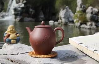 紫砂壶里的茶渍要怎么处置才好
