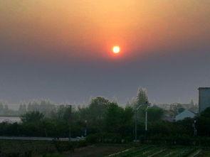 旭日东升   远远的看见一小圆点,呵呵,太阳升起来了!   由于云层厚...