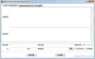 银联8583报文LR脚本生成工具 MAGSS