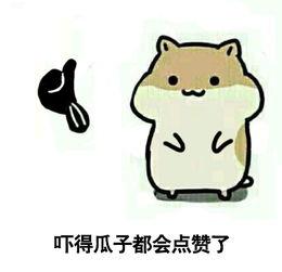 吓得我瓜子都掉了的那只仓鼠是哪部动漫的 名字是什么