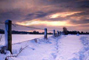 ...关于下雪的唯美句子古风 描写下雪的优美古风句子