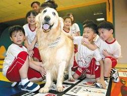 赵四牵狗拿棒球棒照片-(图片来源:台湾《联合晚报》)-台北一幼儿园雇狗当 老师 月薪近三...
