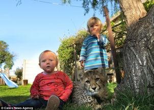 恩琪与布娃娃人体-...拉一天天长大,身体越来越强壮,金和海恩在他们现在住的住宅的后...