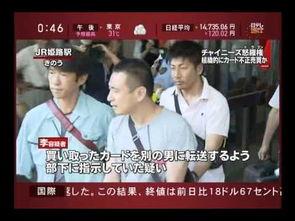 日本准黑社会4名中国籍成员被捕 涉嫌与山口组成员斗殴