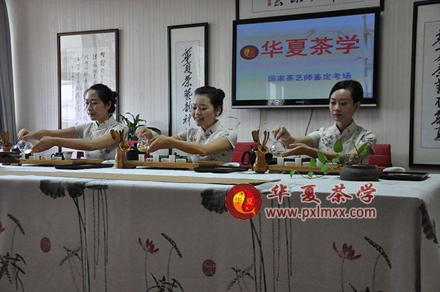 华夏茶艺培训学校高级茶艺师学员合影-生病了 对症喝茶是关键