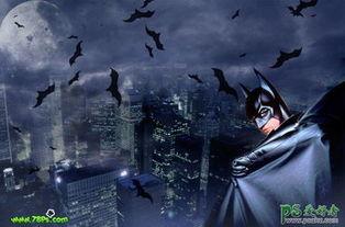 蝙蝠侠 暗夜