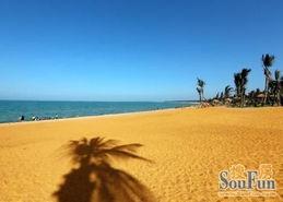 东北华北降温 候鸟南归 金沙滩成新热点