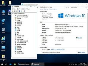 技术员电脑城Ghost Win10 X86专业纯净版v1.2