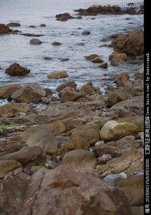 海边的石头
