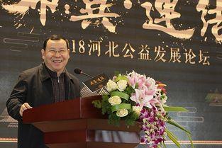 2018河北公益发展论坛举办