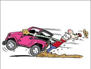 杭州就增加了上百万名新手司机.考出了驾照就会开车了吗?看看这些...