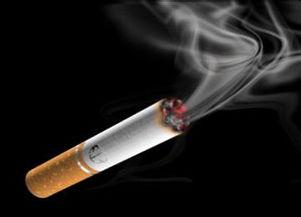 .会在肺部造成钋210沉积,制法是把烟草烤干后切丝,然后以纸卷成...