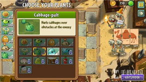 植物大战僵尸选植物攻略