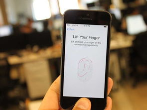 传言十三:iPhone 6用户或可通过Touch ID在PayPal上面完成支付 苹果...
