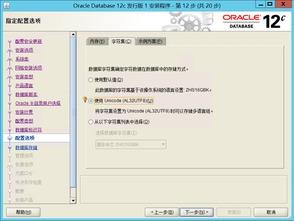 ...IS10.3 Oracle12C ArcGIS Server10.3安装布署 之一