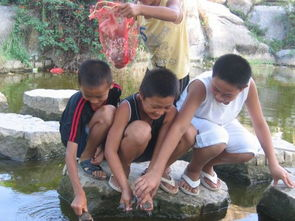 ...来务工者孩子在石狮的暑假生活素描
