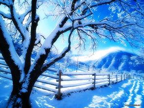 冬日恋歌专辑壁纸 第12张 自然风景壁纸 高清桌面壁纸
