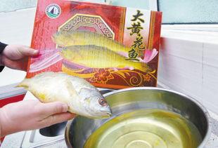 """""""大黄花鱼""""泡水后不久,颜色变白,清水变黄冒充;堤北工商所昨对..."""