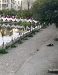 ...川泸县一中学生校内死亡 警方初步排除他杀fx湖南卫视小年夜