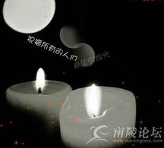 QQ空间免费开场动画 月光下白马奔腾