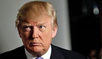 据媒体爆料,特朗普及其名下公司在多个机构中欠下巨额债务.-美媒...