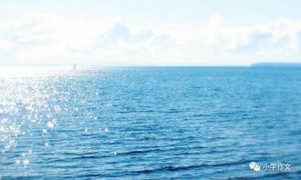 描写大海的好词好句好段