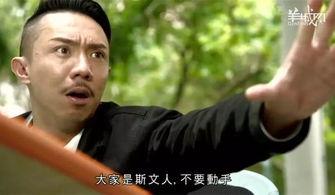 TVB,我认输 2017年最后一波毒鸡汤你玩晒喇