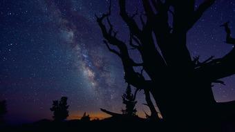 星空中的银河图片