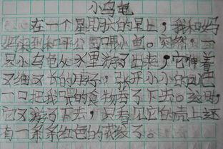 小学生日记50字 小学一年级每日一句话