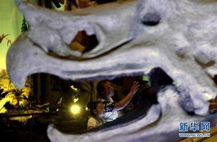 方舟恐龙蛋怎么孵化