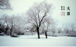 关于大雪的唯美说说句子大全 严冬的大雪别有一番情趣