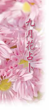 九月 生日花语