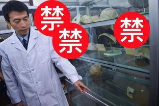 法医秦明现实版 探秘北京市公安局法医鉴定中心